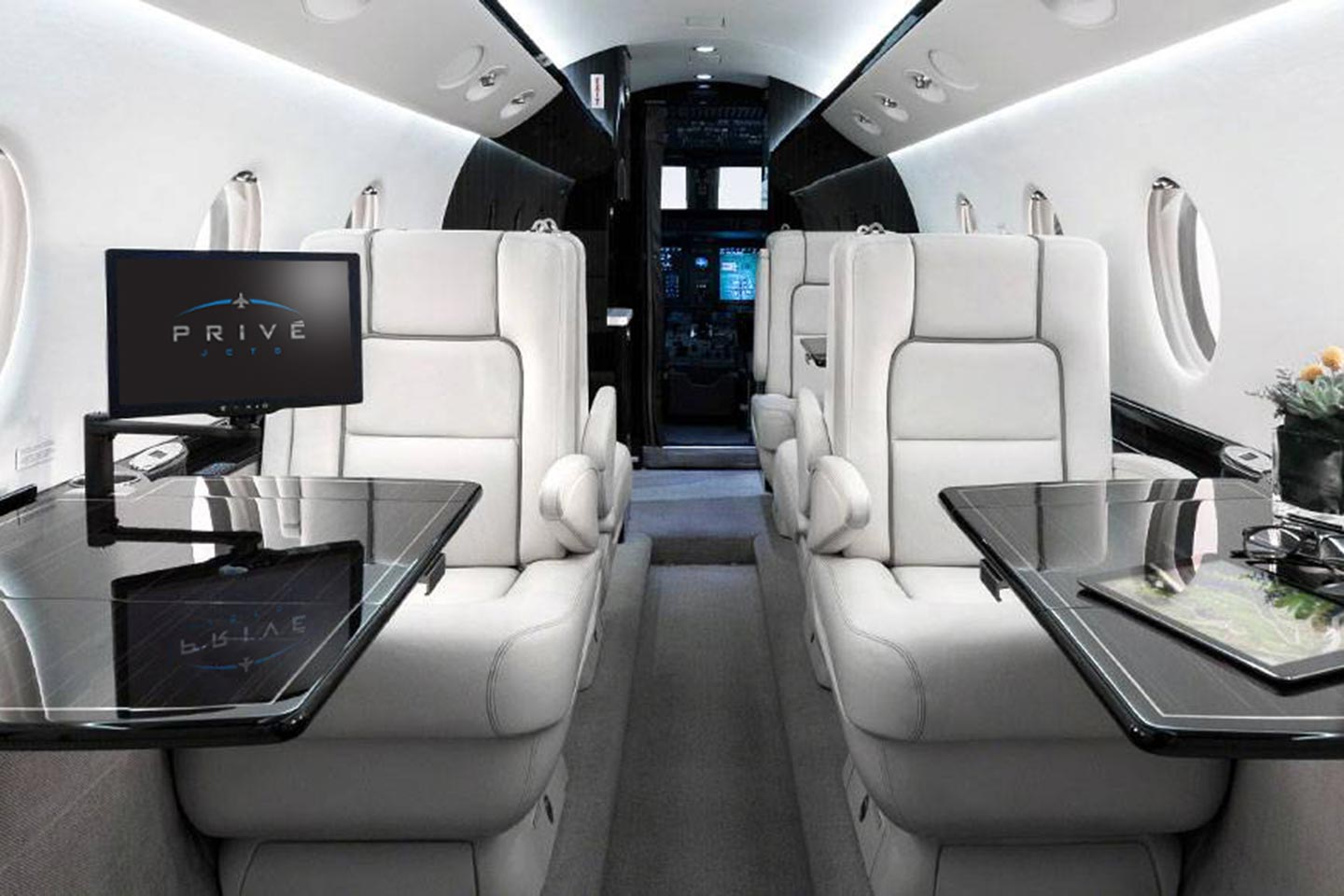 Private Mid Size Jet Gulfstream 150 Interior